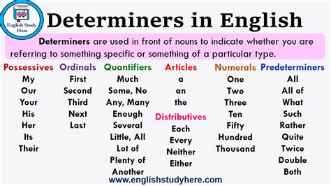 Determiners in English - English Study Here